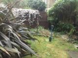 Garden makeover returf before